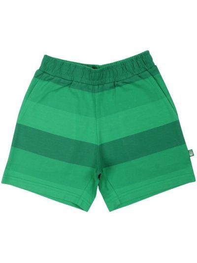 ORGANIC - Lun Shorts Ciboulette
