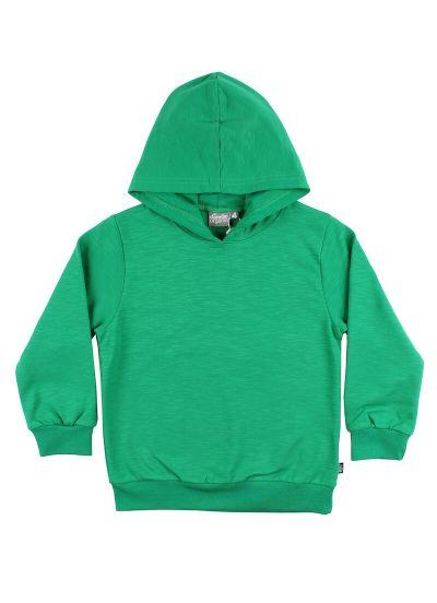 ESS - ORGANIC Fruit Hoodie Green