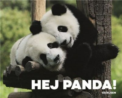 Carlsen Hej Panda Papbog
