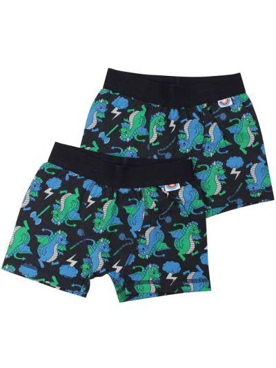 BIFROST - 2Pak Underwear Boys Dk Navy DRAGONS